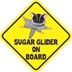 Gray Sugar Glider on Board Magnet