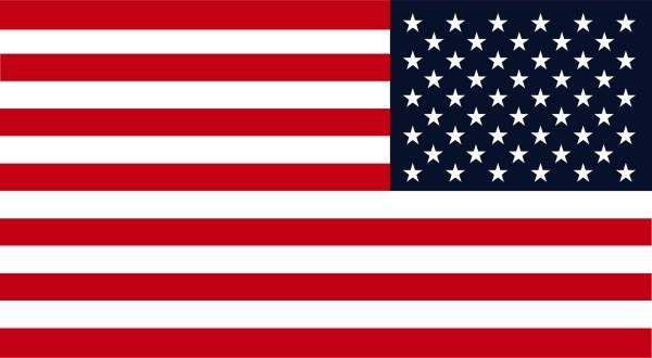 Reverse Flight USA Flag Vinyl Sticker