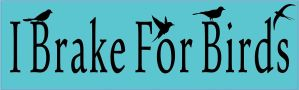 I Brake For Birds Sticker
