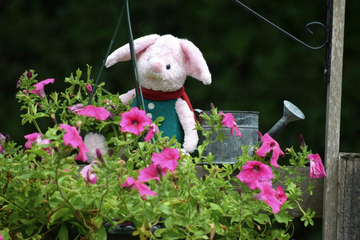 Piglet watering the flowers. Christopher robin vintage soft toys