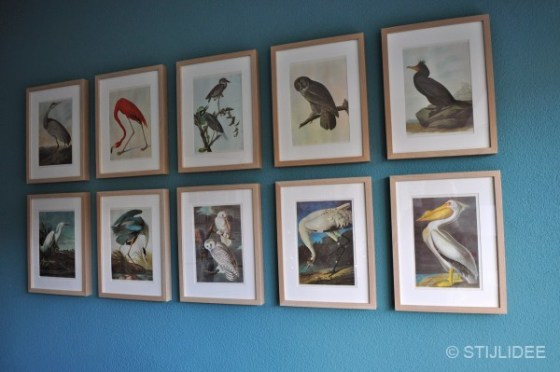 Styling van fotolijsten met vintage vogel illustraties door STIJLIDEE Interieuradvies en Styling