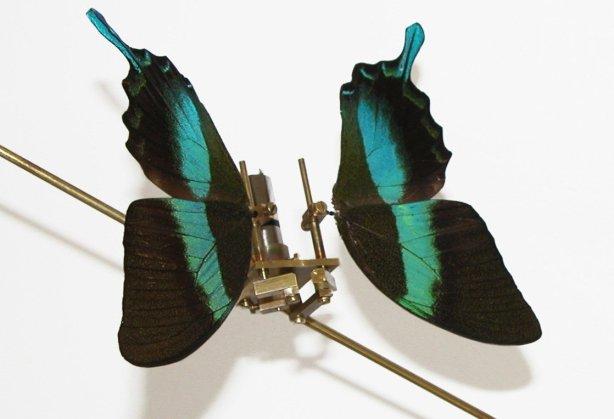 Stijlmagazine- Quadriennale-Rebecca Horn-Butterfly