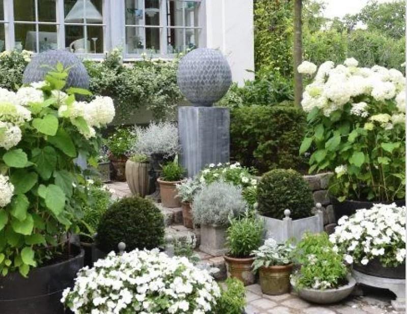 Tuin inspiratie | Tuintrends - tuin inrichten en accessoires