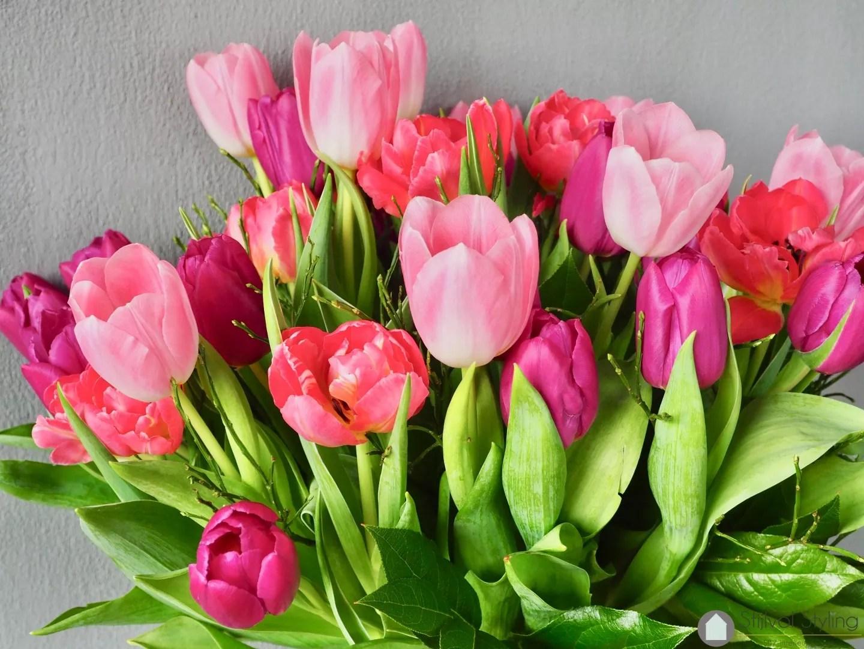 Interieur Hollandse Tulpen : Interieur hollandse tulpen in jouw interieur u stijlvol