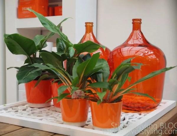 Oranje feest styling