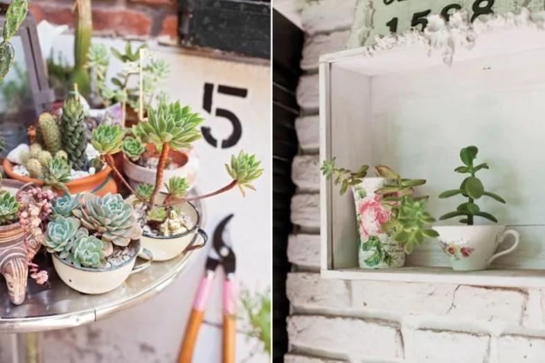 Groen wonen & DIY   Zomerse ideeën met vet planten & cactussen + DIY mini tuintje maken