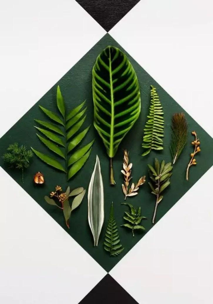 Botanische wonen - woontrends 2015 door Susanne van Stijlvol Styling Woonblog www.stijlvolstyling.com