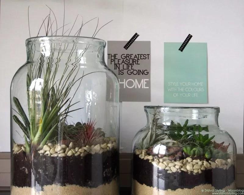 DIY Mini-tuin maken | Stijlvol Styling woonblog www.stijlvolstyling.com