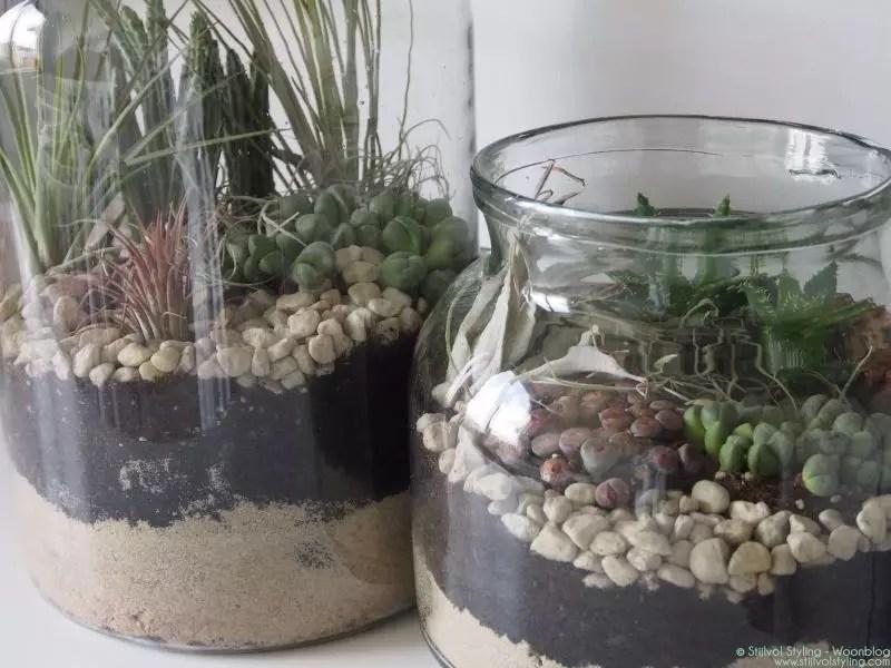 DIY Mini-tuin maken   Stijlvol Styling woonblog www.stijlvolstyling.com