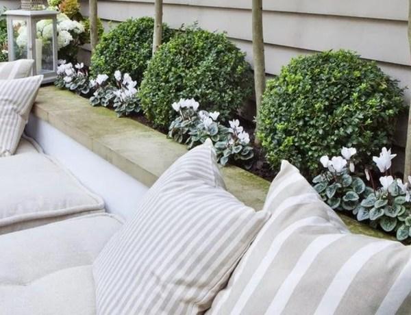 Buitenleven | Buxus = Tuinplant vd maand april - Stijlvol Styling woonblog www.stijlvolstyling.com