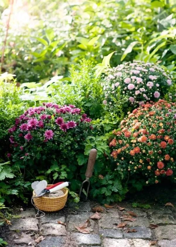 Buitenleven | 7 handige onderhoud tips voor jouw najaarstuin - Woonblog StijlvolvolStyling.com