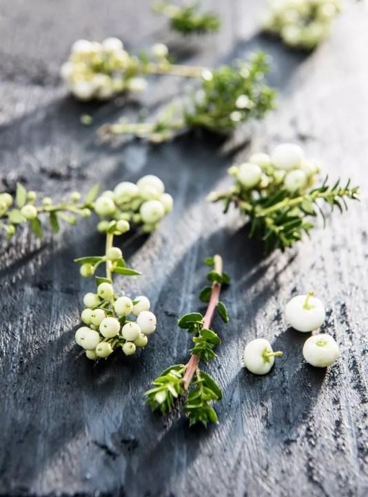 Parelbes in de herfst tuin | Buitenleven | 9x de mooiste herfst tuinplanten - Woonblog StijlvolvolStyling.com