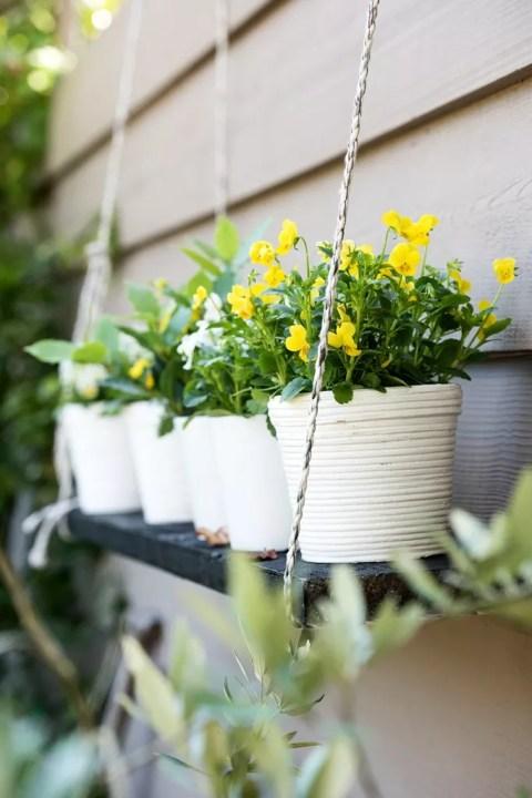 Violenen in de herfst/ winter tuin | Buitenleven | 9x de mooiste herfst tuinplanten - Woonblog StijlvolStyling.com