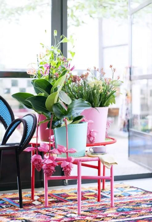 Groen wonen | Tropische schoonheden - Woonblog StijlvolStyling.com