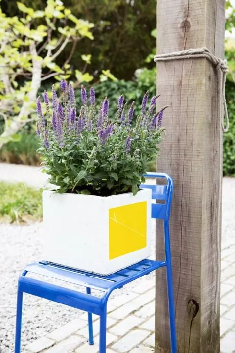Buitenleven| Salie = Tuinplant van de Maand mei - Woonblog StijlvolStyling.com