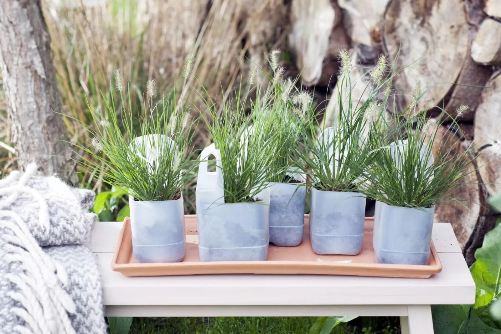 Buitenleven   Siergrassen in de tuin - Borstelveergras = Tuinplant van de Maand september - Woonblog StijlvolStyling.com