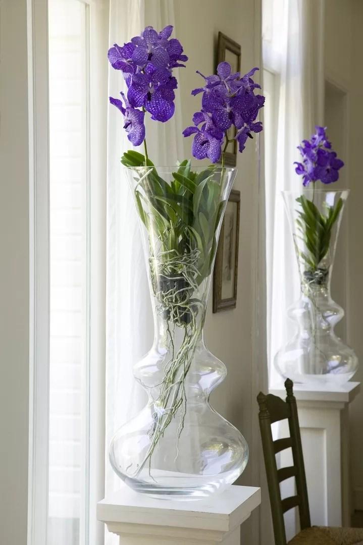 Groen wonen   Winterse woontrends met de Orchidee - Woonblog StijlvolStyling.com