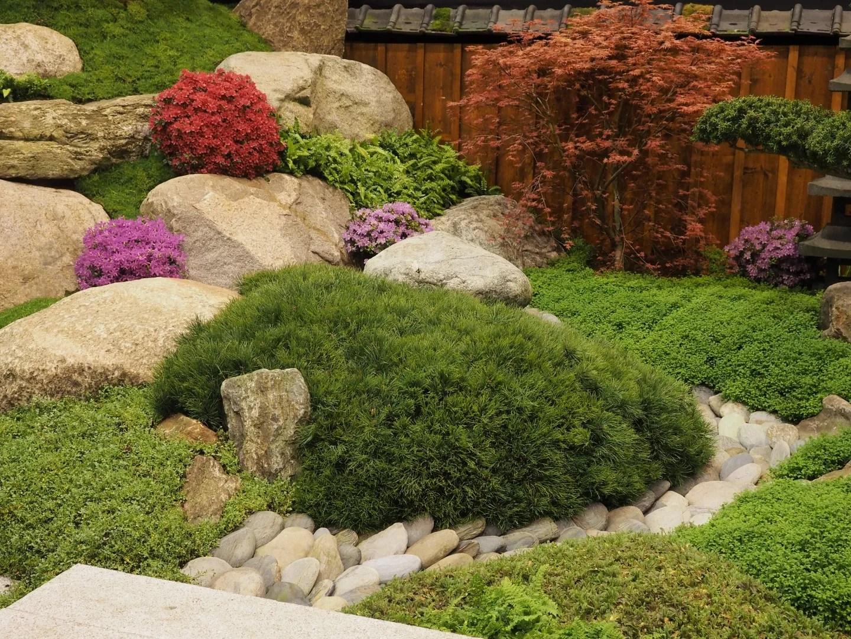 Er op uit jubileumeditie tuinidee feestelijk en groen