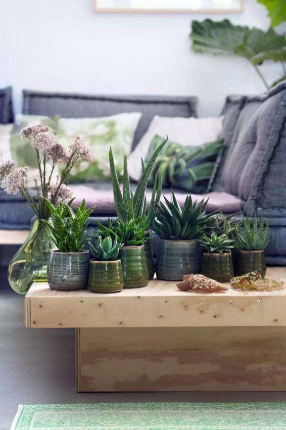 Groen wonen | De Aloë - Trendy, karakteristiek en stoer | Woonblog StijlvolStyling.com