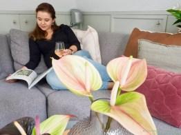 Groen wonen | Exoten als Anthurium brengt kleur in huis! - Woonblog StijlvolStyling.com