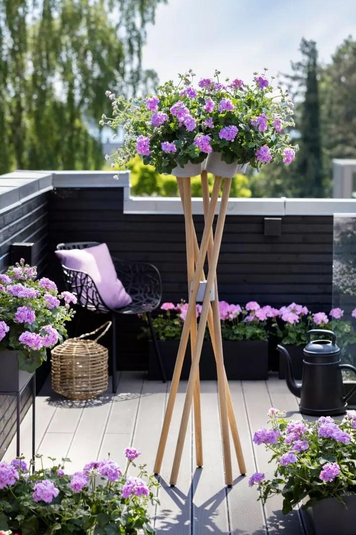 Tuin inspiratie   Geraniums: verrassend veelzijdig - woonblog StijlvolStyling.com - Fotocredit: Pelargonium for Europe (PfE)