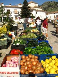 marktgrazalema