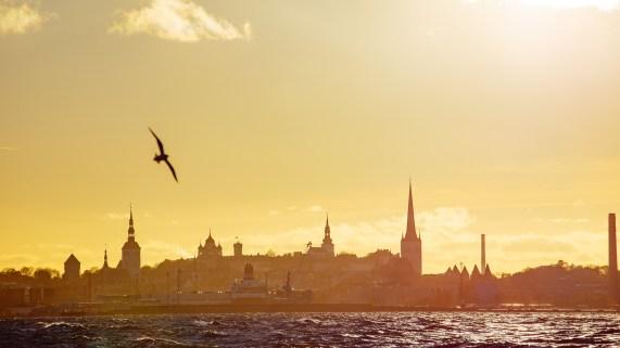 Tallinn - IMG_3558