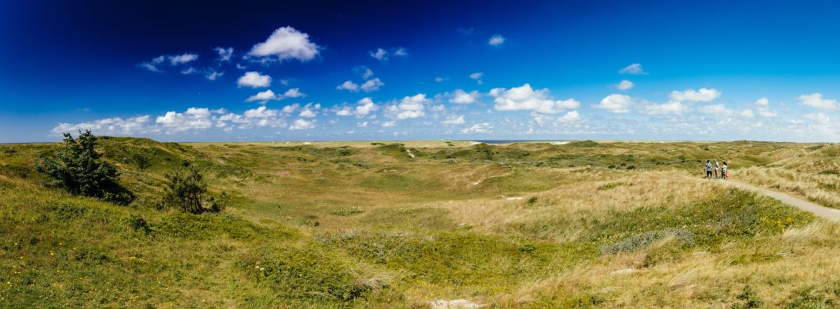 2016-07 - HTICT Texel - IMG_7460-Pano