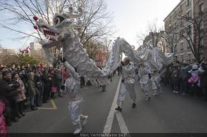 Chinese new year in paris