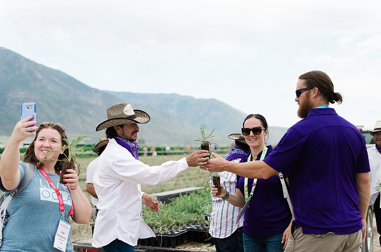 Young Living Lavender Farm, Mona, Utah (48)