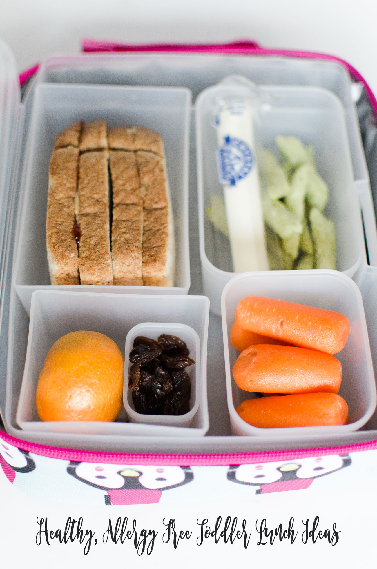 Healthy Toddler Lunch Ideas (Nut Allergy Free!) with Relay Foods (12)