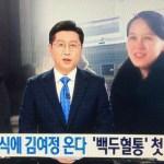 [시사] 이제는 북한 체제선전용 '백투혈통'이란 표현까지 등장