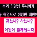 주사파가 촛불 혁명으로 정권을 잡은 대한민국, 지금 우리는 죽느냐? 사느냐? 이것이 문제입니다