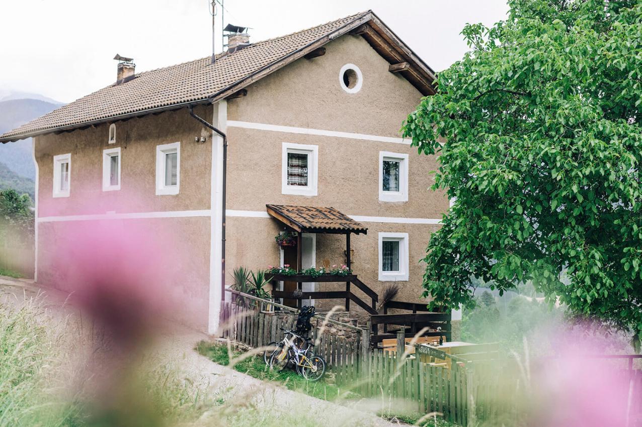 home_untersteinhaus-8939