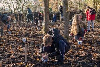 Schoolkinderen planten de Bluebells op Martenastate.