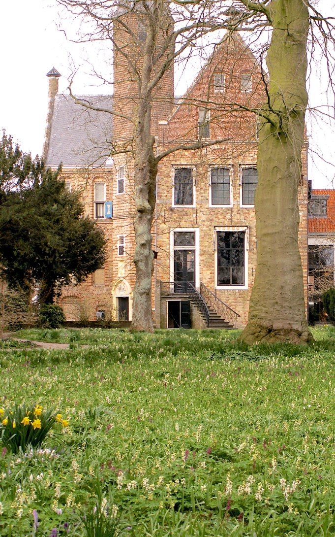 Museum Martena (Franeker) and Martena garden with Bulbous Corydalis.