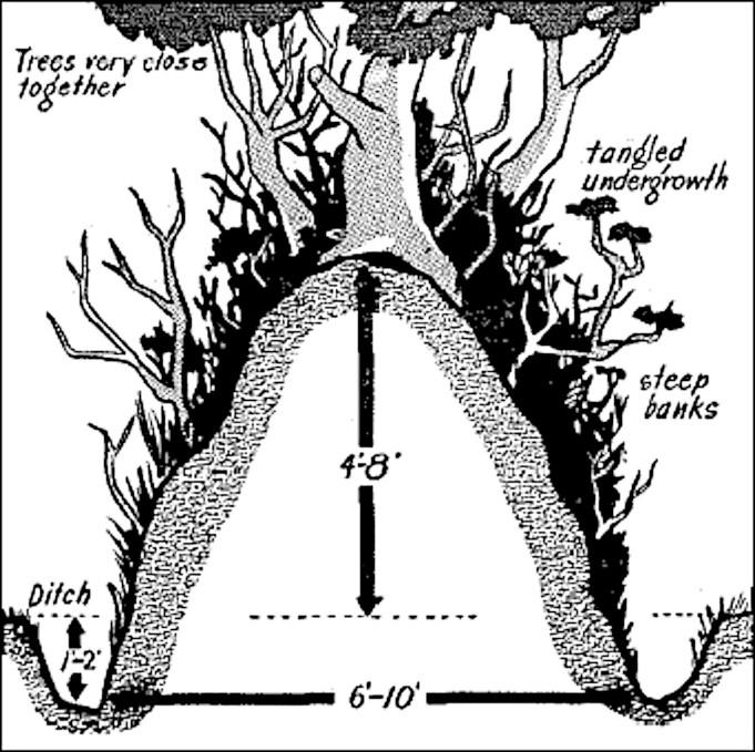 Schema van heggen (houtwallen) in Normandië.