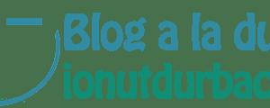 ionut-durbaca-logo-blogger-iesean-blog-din-iasi