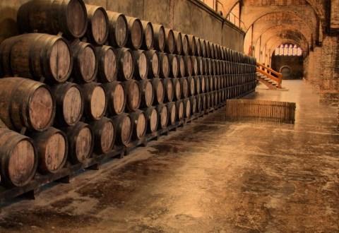 Europa și istoria vinului. LUMEA VECHE versus LUMEA NOUĂ