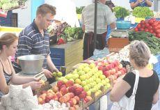Ministrul Agriculturii, Daniel Constantin, va participa mâine, la deschiderea oficială a festivităților dedicate Zilei Recoltei, eveniment organizat de primăria Deva.