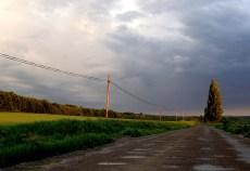 posibile-ploi