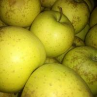 thumb_vand-mere-golden-toate-soiurile-calitatea-i-ii-si-ii_2