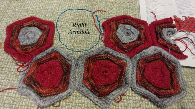 Dark Night Rose Sweater progress