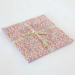 1930 Minis 10 inch Stacker Bundle Penny Rose Fabrics
