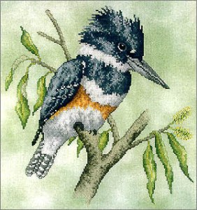 Belted Kingfisher Bird Cross Stitch