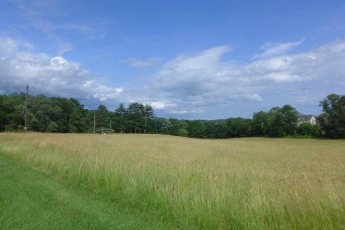 Pennsylvania meadow, Route 82
