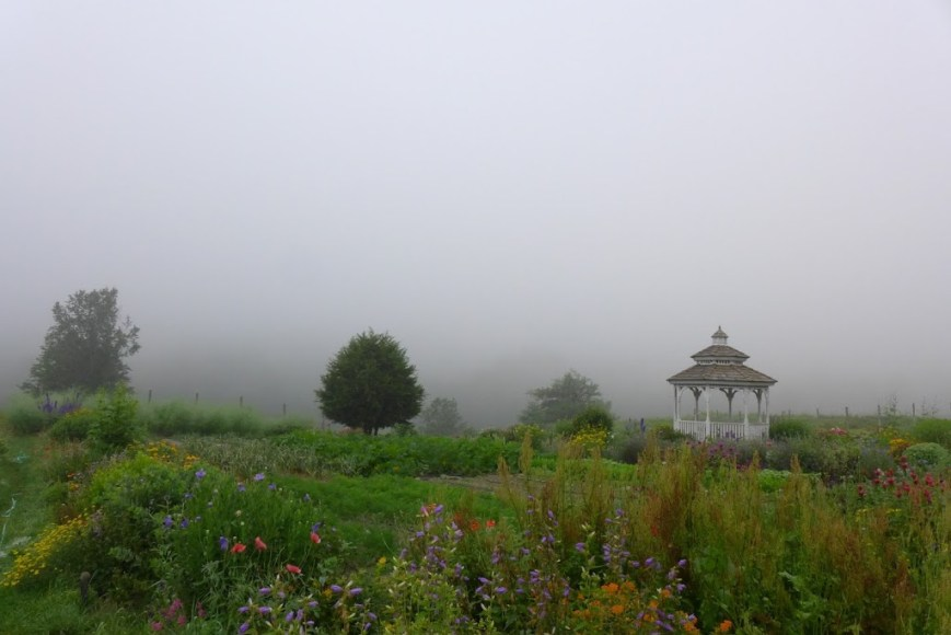 Foggy garden at Karme Choling, Vermont