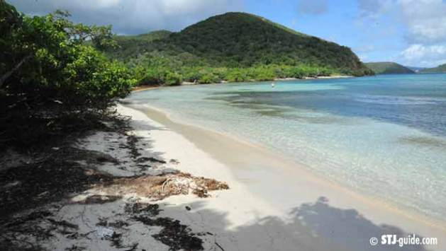 brown-bay-beach-stjohn
