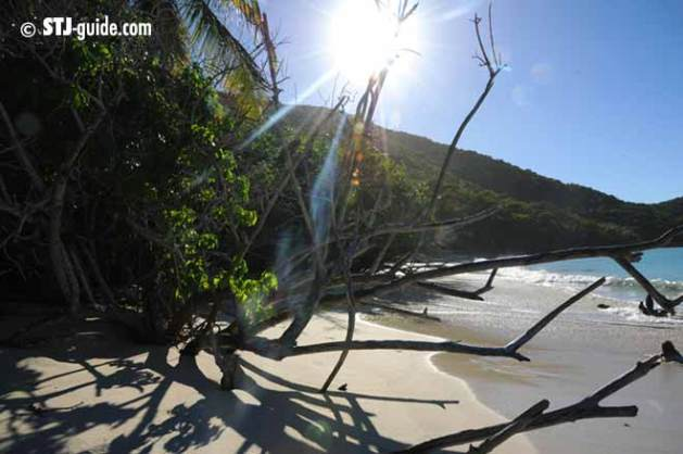 cinnamon-bay-beaches-stjohn-usvi