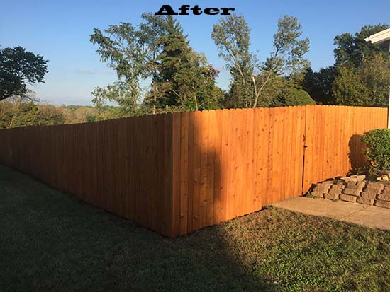 Stl Fence Staining